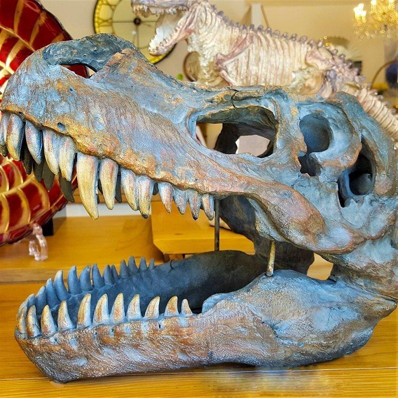 Dinosaur Decor
