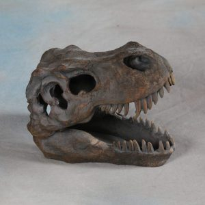 MEDIUM T-REX DINOSAUR SKULL ORNAMENT