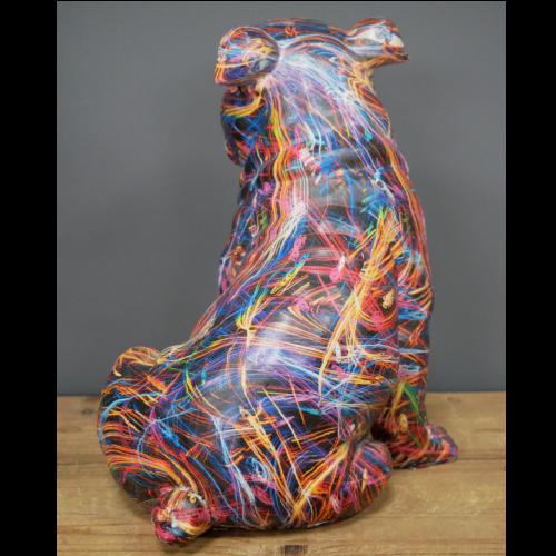 Multi Coloured Bull Dog